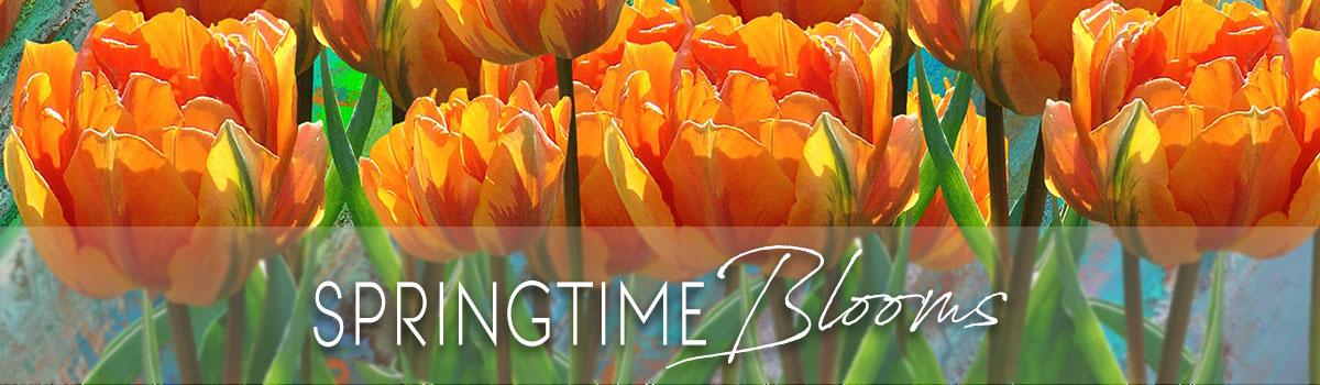 Spring Flowers from FlowerWorks II