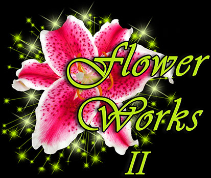 Flower Works II, your online florist in Medford, NJ