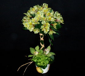 Topiary Alstro from Flower Works II, your Medford area florist